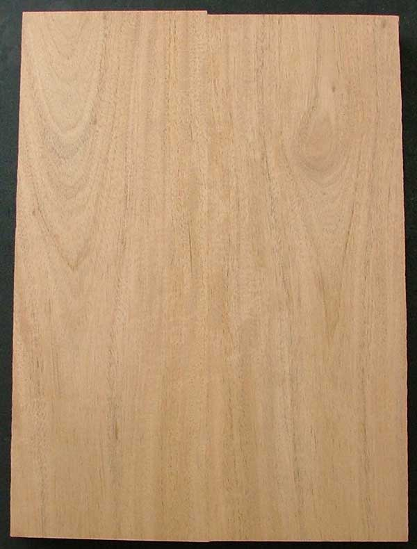 Mahogany Electric Guitar Body Blank Dimensions